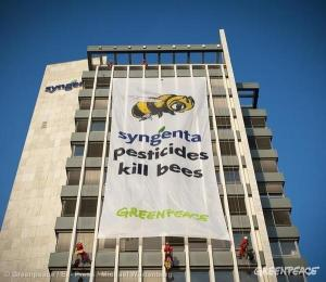 Pesticides kill bees
